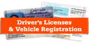 Drivers License Image