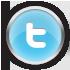 Chrome Twitter Icon