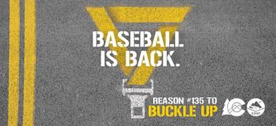 Baseball is back reason stencil