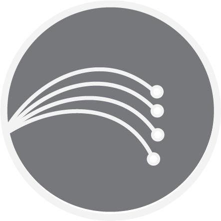 FiberNetwork.png detail image