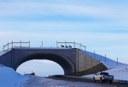 Deer cross SH9 using the first overpass structure, Photo courtesy of J Richert, Blue Valley Ranch, Jan. 2016 thumbnail image