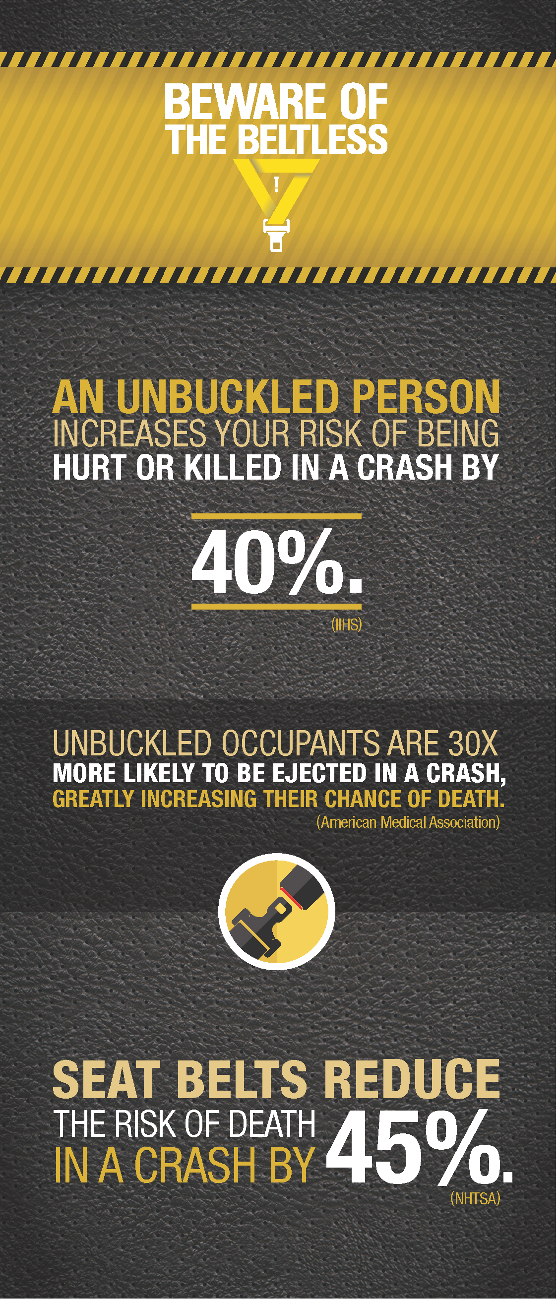 seat belt stats card detail image