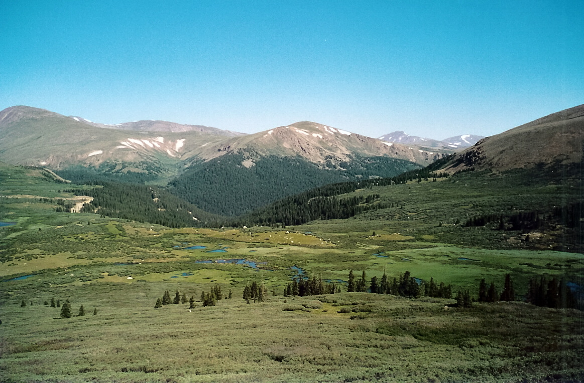 Guanella Pass High Mountain Valley